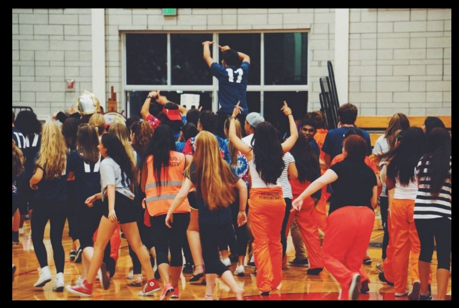 This was taken by Trisha Shah at the 2015 Homecoming Skit Rally. These are the class of 2017 Juniors during their