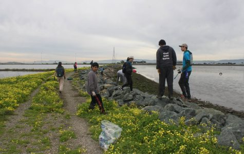 Karyn (center of picture) and other volunteers help pick up trash at the Hayward Shoreline Interpretive Center.