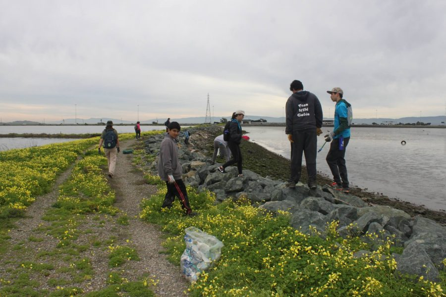 Karyn+%28center+of+picture%29+and+other+volunteers+help+pick+up+trash+at+the+Hayward+Shoreline+Interpretive+Center.+