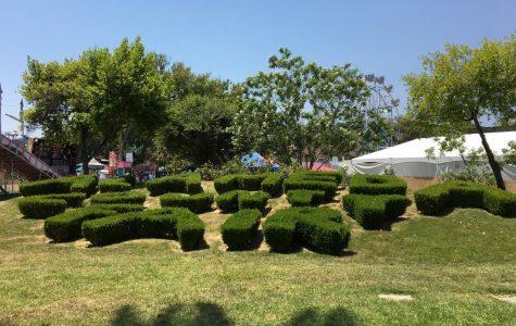 DHS Summer Fun! I Volunteered at the Alameda County Fair