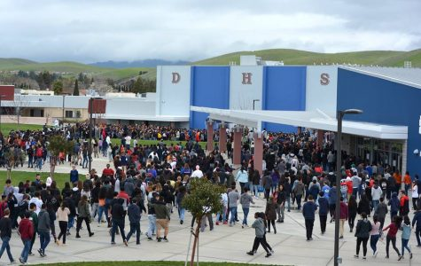 DHS Students and Staff Opinions on Gun Regulation and School Safety