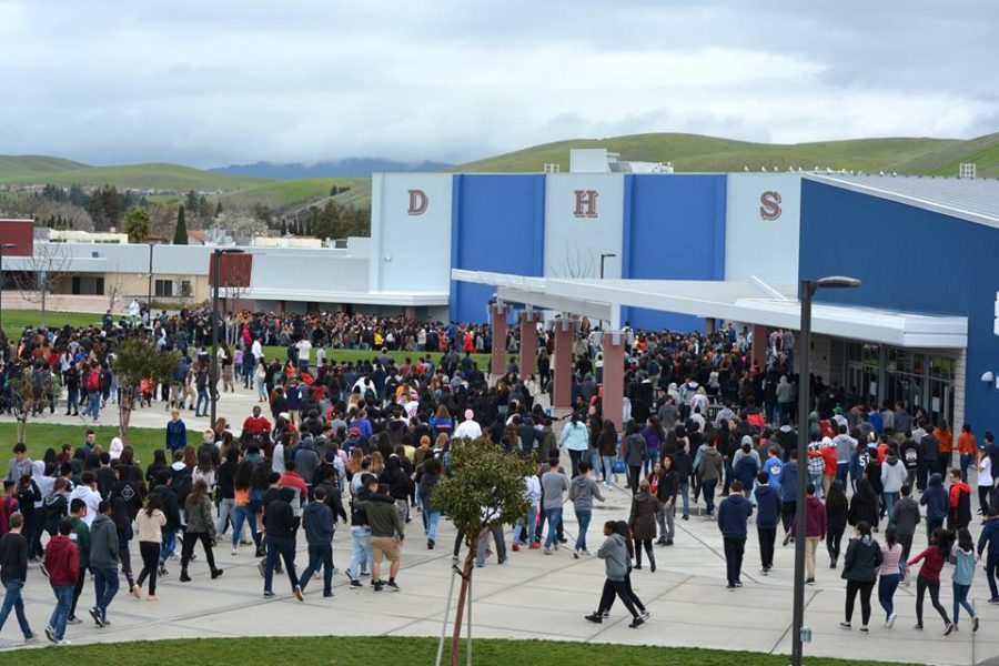 DHS+Students+and+Staff+Opinions+on+Gun+Regulation+and+School+Safety