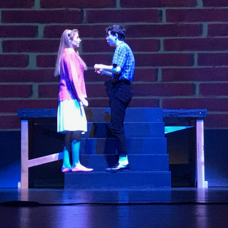 Eccentric teenager John (Carson Merrick) catches the lovely Mary (Ellie Laurent) off-guard as he attempts to express his love for her through a series of jumbled (and somewhat romantic) ramblings.
