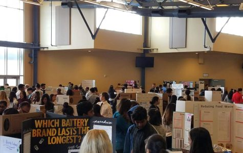 2nd Annual DHS Science and Engineering Fair included over 250 different projects displayed in two different sessions.
