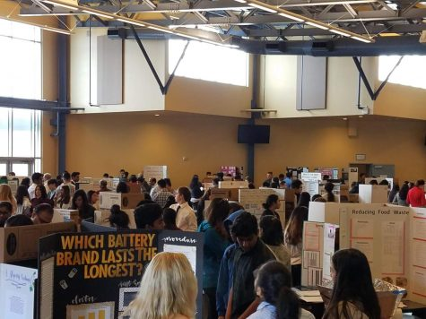 2nd Annual DHS Science and Engineering Fair Brings New Champions