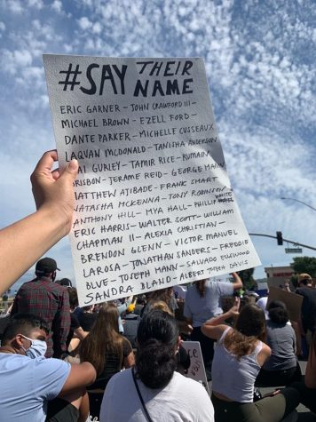 Protestors created signs that recognized the victims of police brutality.