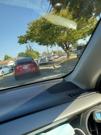 Parking lot troubles leave student drivers perplexed